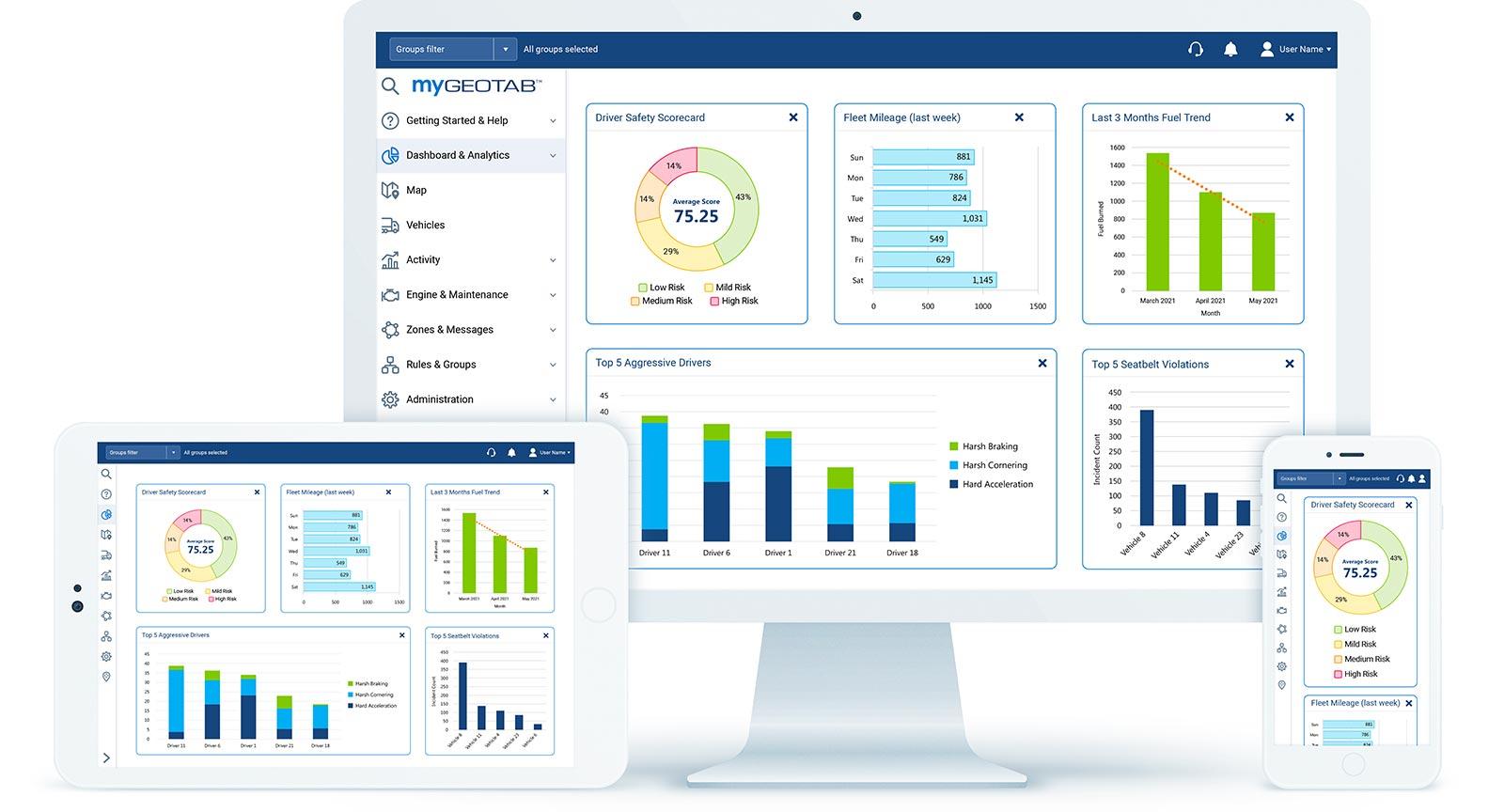 government fleet management software screenshot